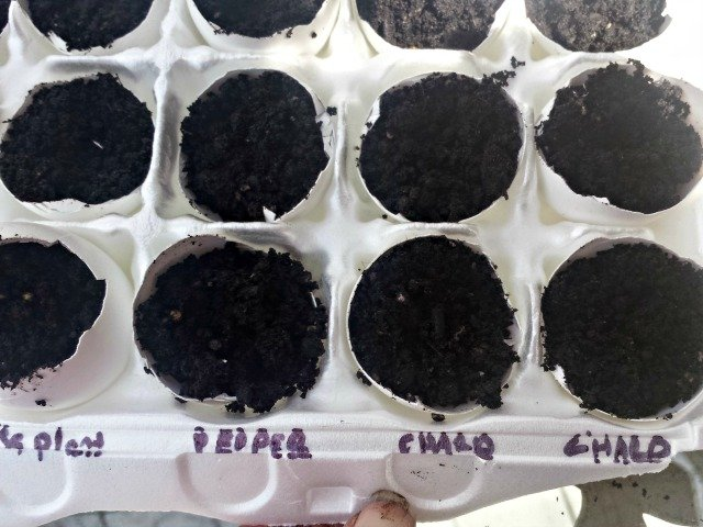 Label your seeds