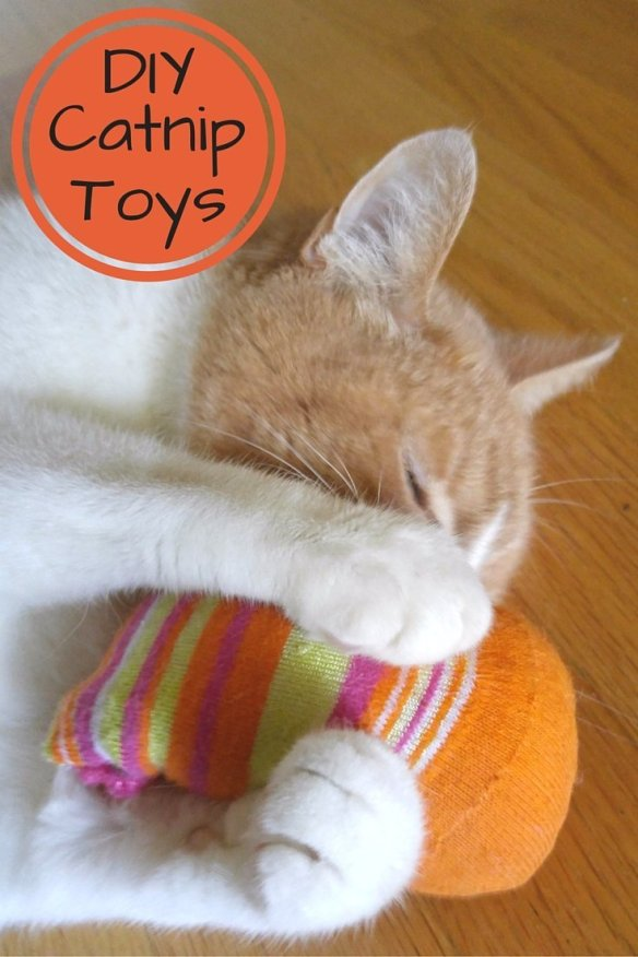 A quick and easy tutorial on how to make homemade Catnip Toys using unmatched socks and other easy supplies. The fastest DIY project ever.