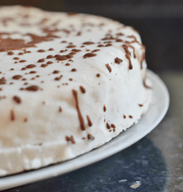 Dairy Free vegan gluten free frozen ice cream cake recipe
