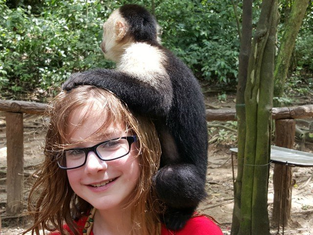 Hang out with the monkeys in Honduras