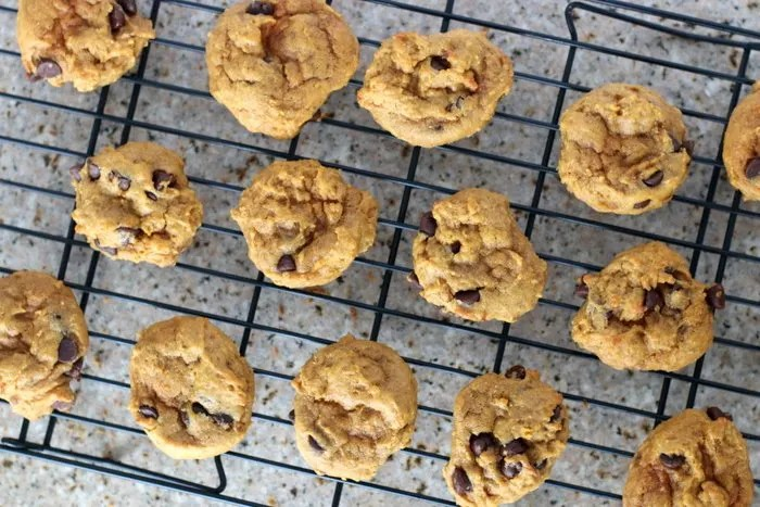This super easy and amazing pumpkin chocolate chip cookie will not lead you astray. Impress at your next party or gathering with these delicious cookies. They'll be the hit of the party!