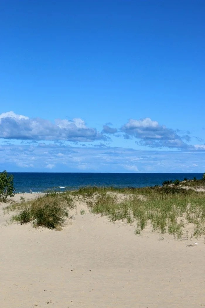 Look out over Warren Dunes 2
