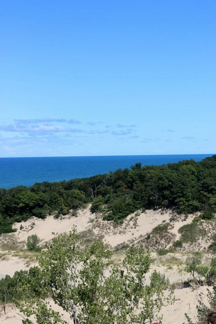Look out over Warren Dunes