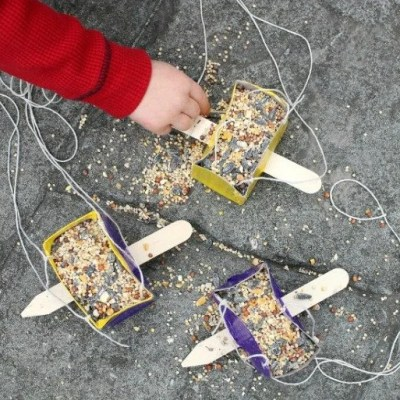 Fun and Easy DIY Bird Feeder Project for Kids