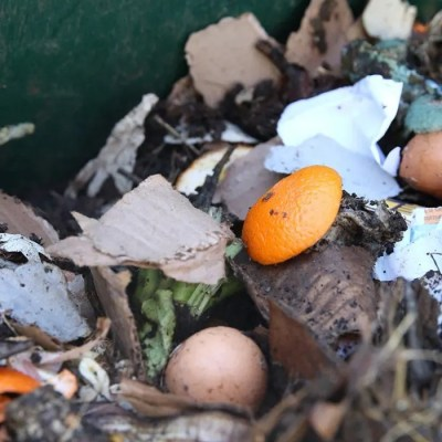 What Is The Right Ratio of Greens and Browns For Composting At Home?