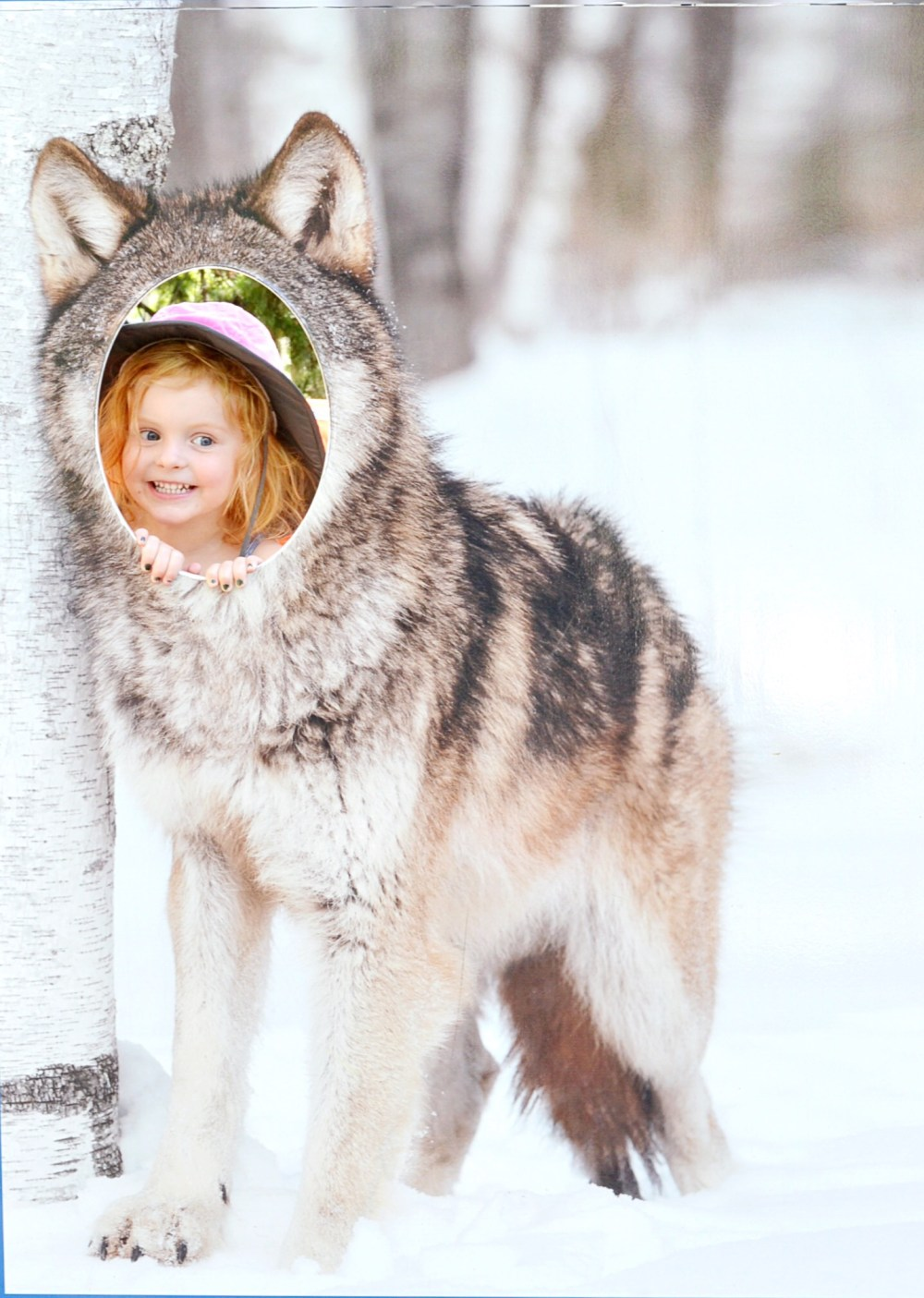 Calgary Zoo Wolves