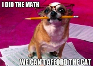 I did the math, we can't afford the cat.