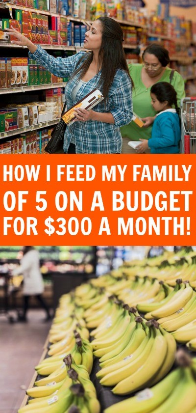 HowI feed my family on a budget with $300 a month - Your family can eat good without breaking the bank, learn how I feed my family on a budget each month.