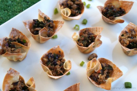 Thai Wonton Cups Appetizer