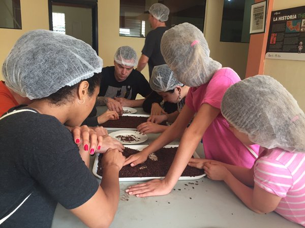 Fathom travel, cruise ship passengers sorting cacao nibs at Chocal wone's chocolate cooperative, Dominican Republic