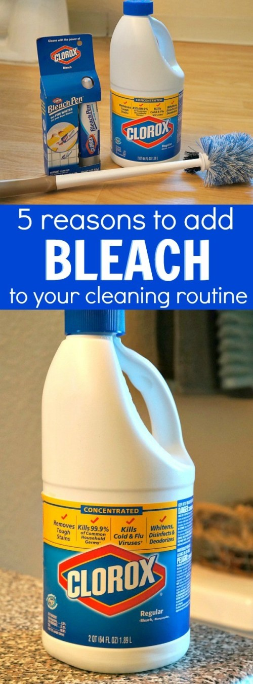 5 reasons to add cleaning with bleach to your household routine - You can seriously disinfect almost everything!