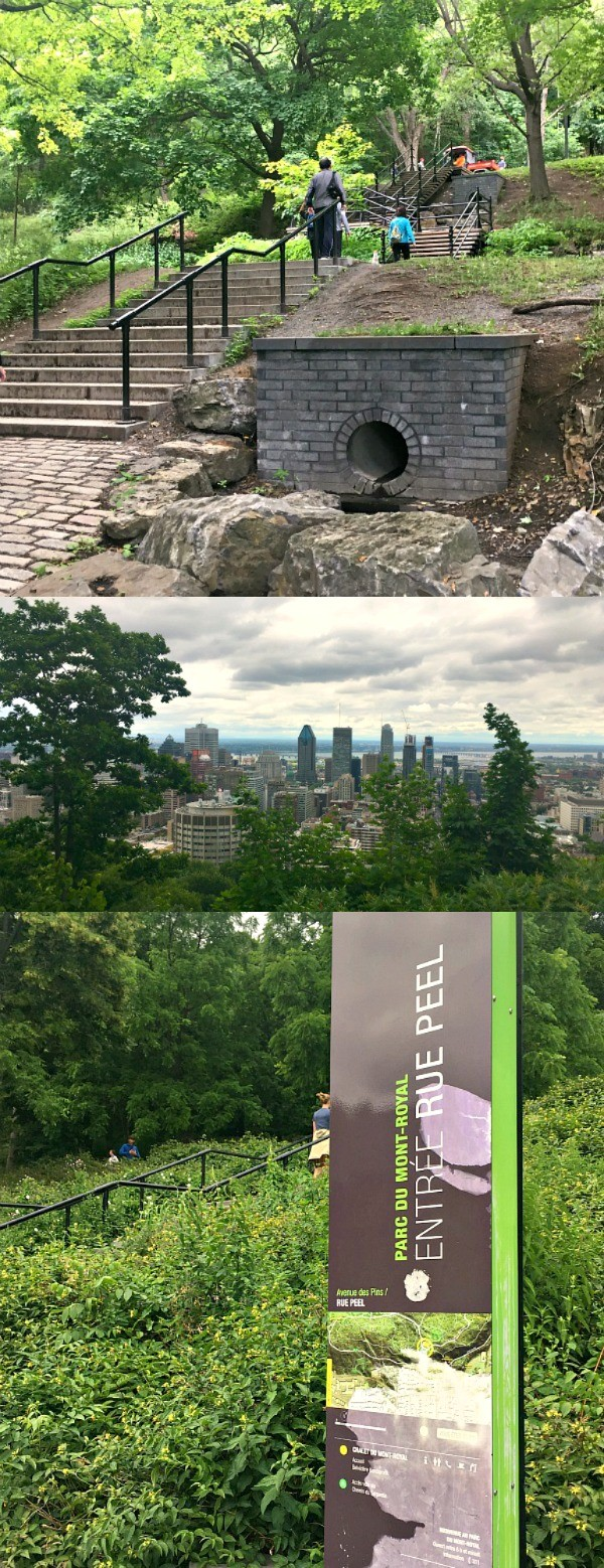 Hiking Parc Du Mont Royal - Sweeping Views of Montreal From The Top!