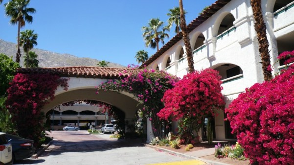Best Western Las Brisas review, gorgeous entry way with beautiful flowers in Palm Springs