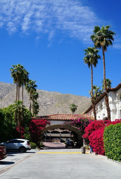 Best Western Las Brisas review, one of the best family friendly hotels in Palm Springs, CA