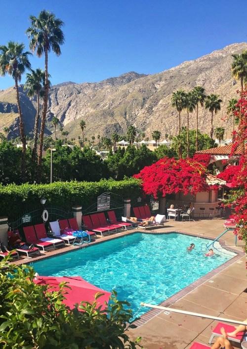 Swimming pool view at the Best Western Las Brisas in Palm Springs, California