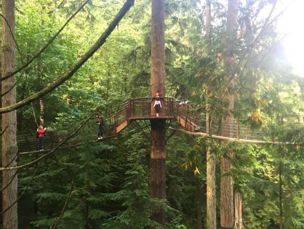 Treetops Adventure at Capilano Suspension Bridge Park Vancouver