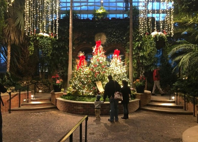 Family enjoys Christmas decorations at Phipps Conservatory in Pittsburgh