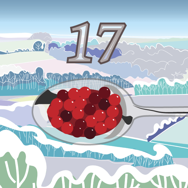 Cranberries Advent 17