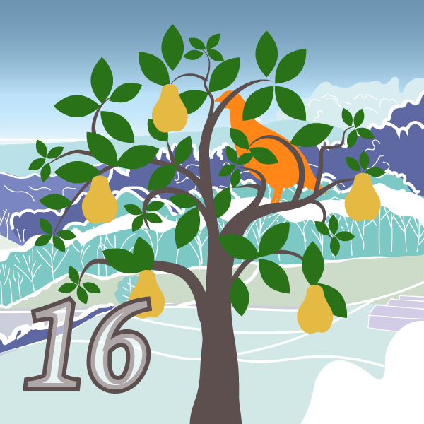 Partridge in a Pear Tree Advent 16