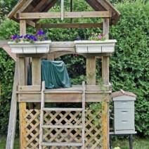 Hive nel cortile di casa.  Foto di Peg Goter, Middletown, RI
