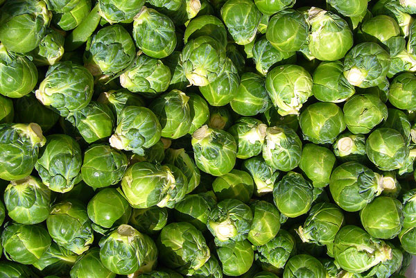 Brussels_sprout_closeup