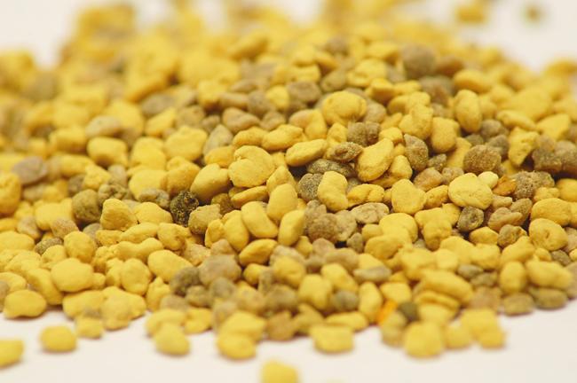 Pollen pellets. Pixabay public domain photo.