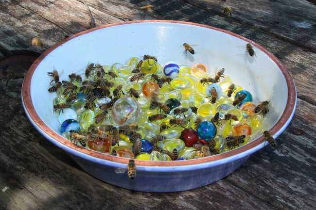 A marble bar for bees - Honey Bee Suite