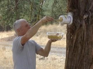 Filling the feeder