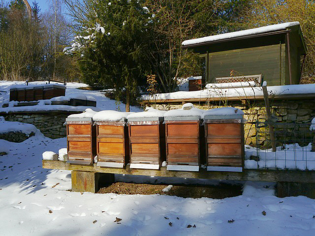 Bee hives in winter.