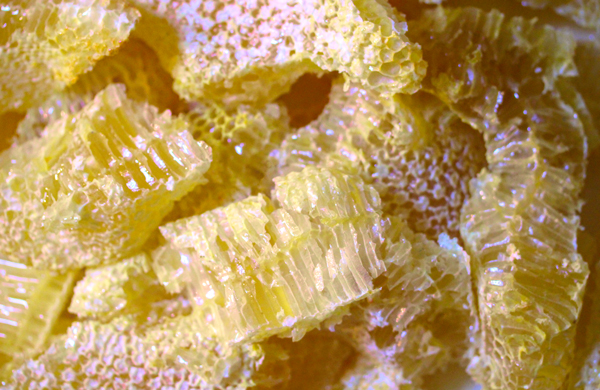 Random shapes: Even random shapes make beautiful comb honey. They can be cut and placed in a box or eased into a jar and covered with extracted honey.
