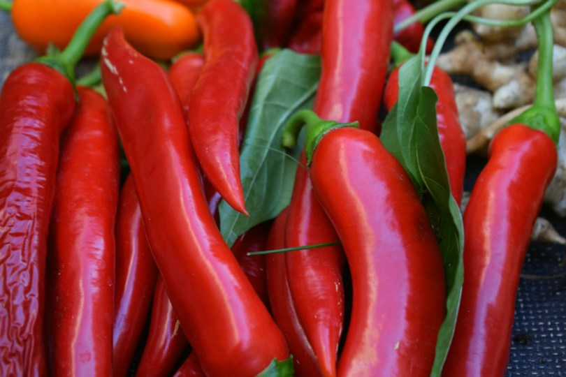 The terroir of a region is reflected in hot sauces made from specific varieties of chili peppers.