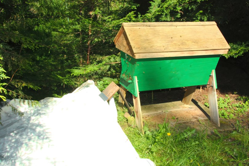 Once the ramp is in place, cover most of it with a sheet spread flat so bees don't tangle in the folds.