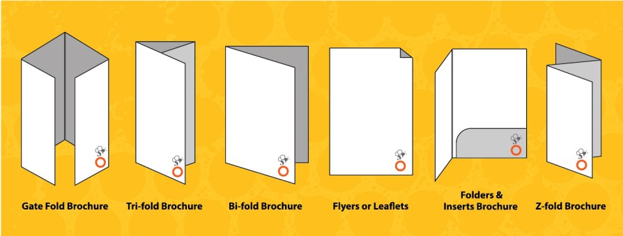 Types of Brochure Designs and Formats