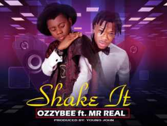 Shake it Ft Mr Real