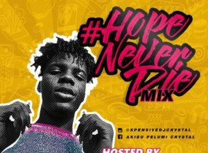 Photo of HOTMIX!!: Dj Crystal – Hope Never Die Mix
