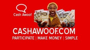 Cash Awoof – How To Make ₦40,000 (Naira) Monthly Without Spending a Dime
