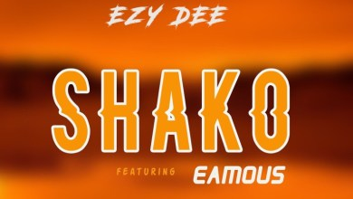Photo of Ezy Dee – Shako Ft Eamous
