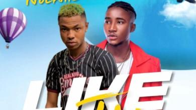 Photo of DOWNLOAD: NoChillz Ft MartinsFeelz – Like This