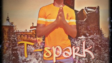 Photo of MP3: T-Spark – Gbemileke
