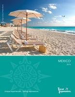 TI mexico brochure