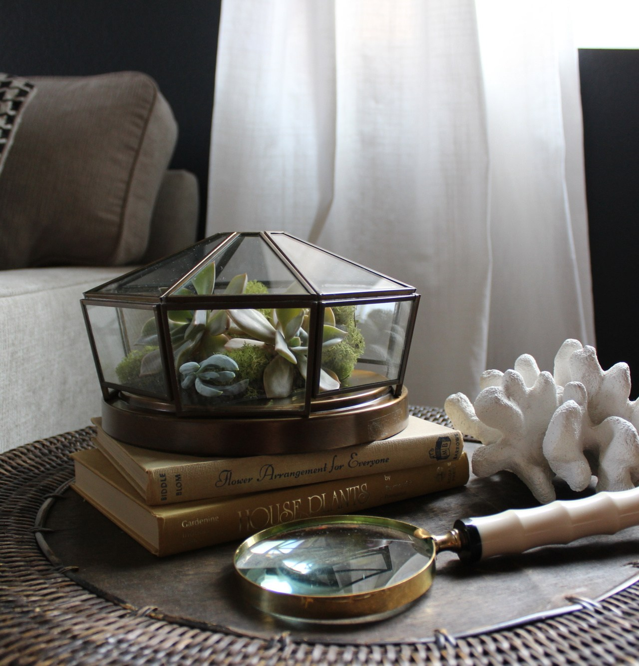 Repurpose a Light Fixture into a Succulent Terrarium