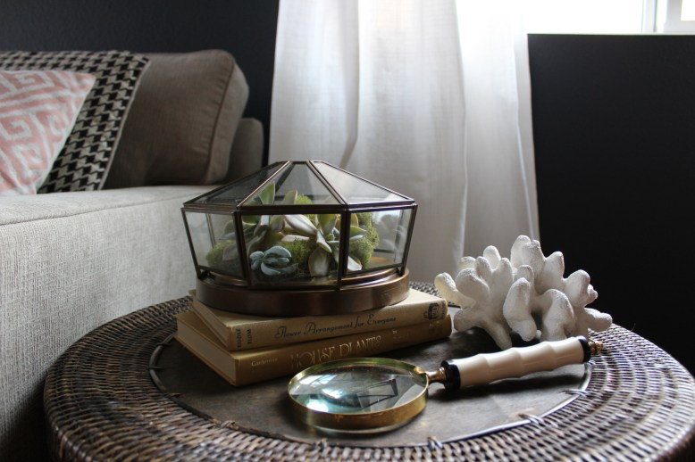 repurposed-light-fixture-succulent-terrarium