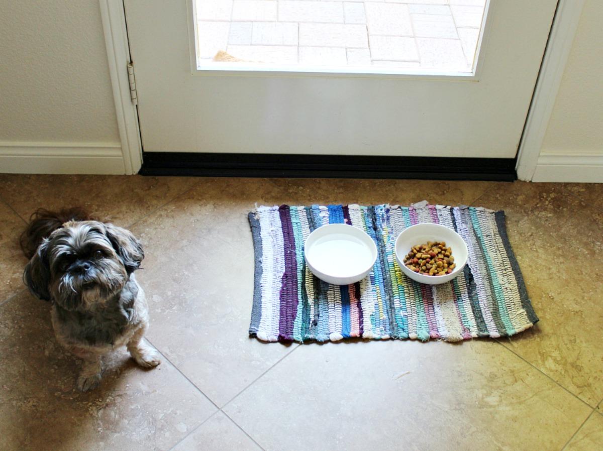 pet feeding station