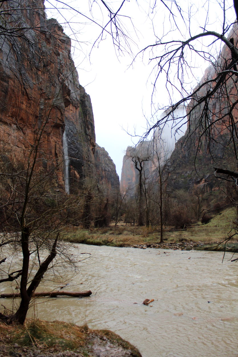 4 hikes to do in Zion in the rain