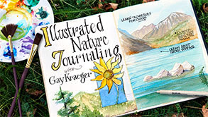 craftsy nature journal