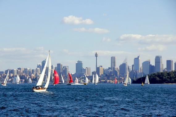 Sydney skyline with sail boats