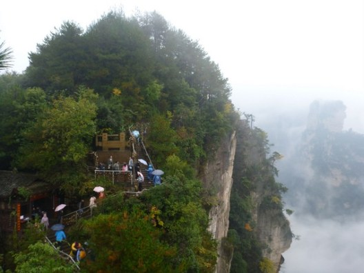 Cliff-side walkways and bridges in Wulingyuan National Forest