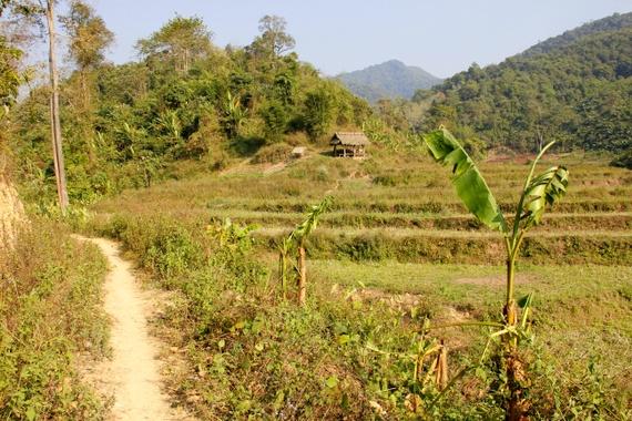 Trek in Luang Namtha