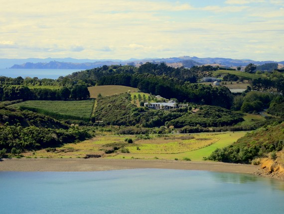 Waiheke island farms