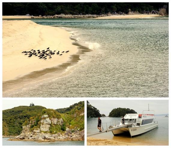 Abel Tasman coastline boat